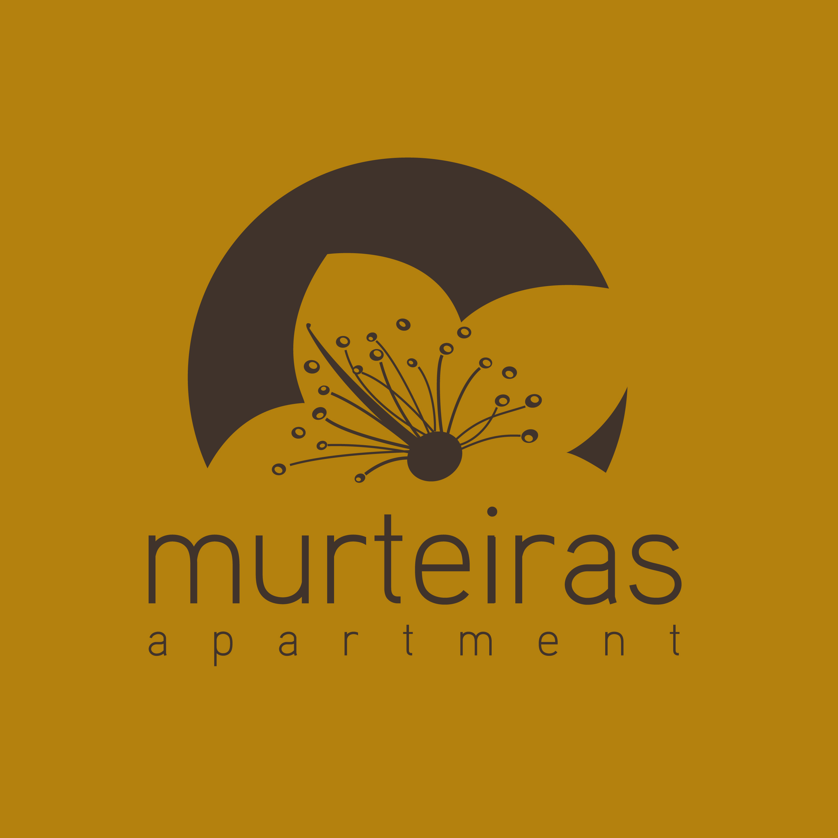 Murteiras Apartment